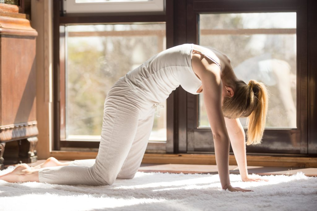 Cat Pose   Top 9 Yoga poses for stress relief   moveOn 89